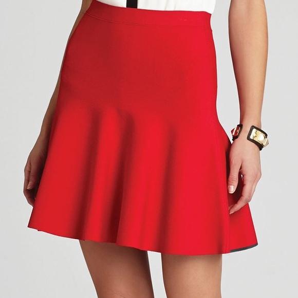 BCBGMaxAzria Dresses & Skirts - Gorgeous skirt